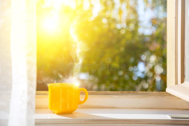 Good morning! Cup on the window with sun. And deed nature background royalty free stock photo