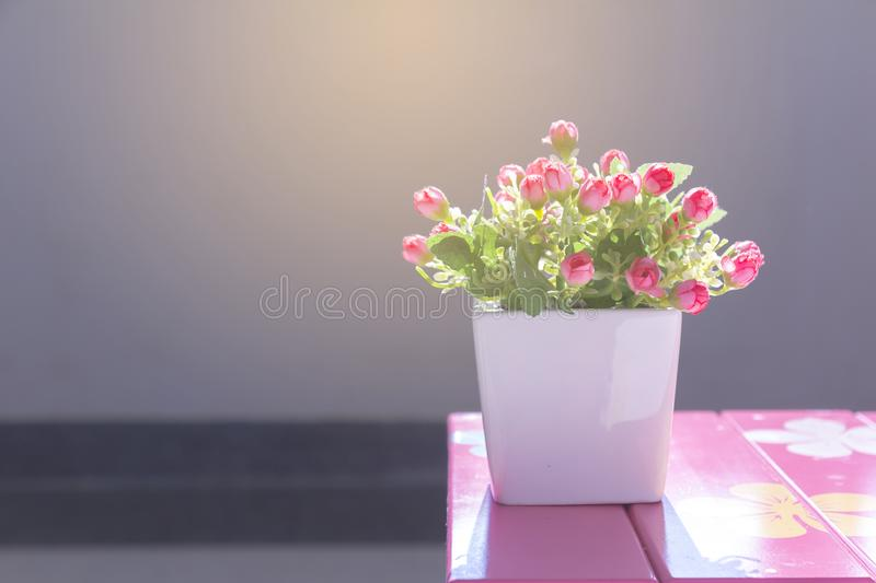 Good morning flowers. royalty free stock image