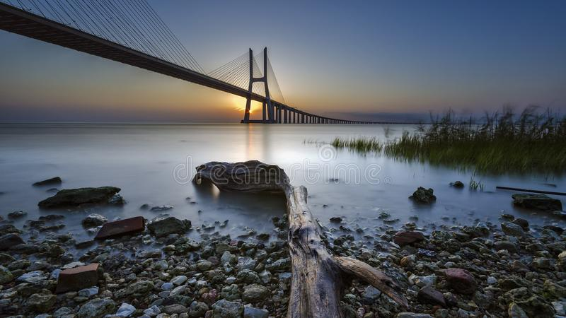 Good Morning Lisbon :) royalty free stock images
