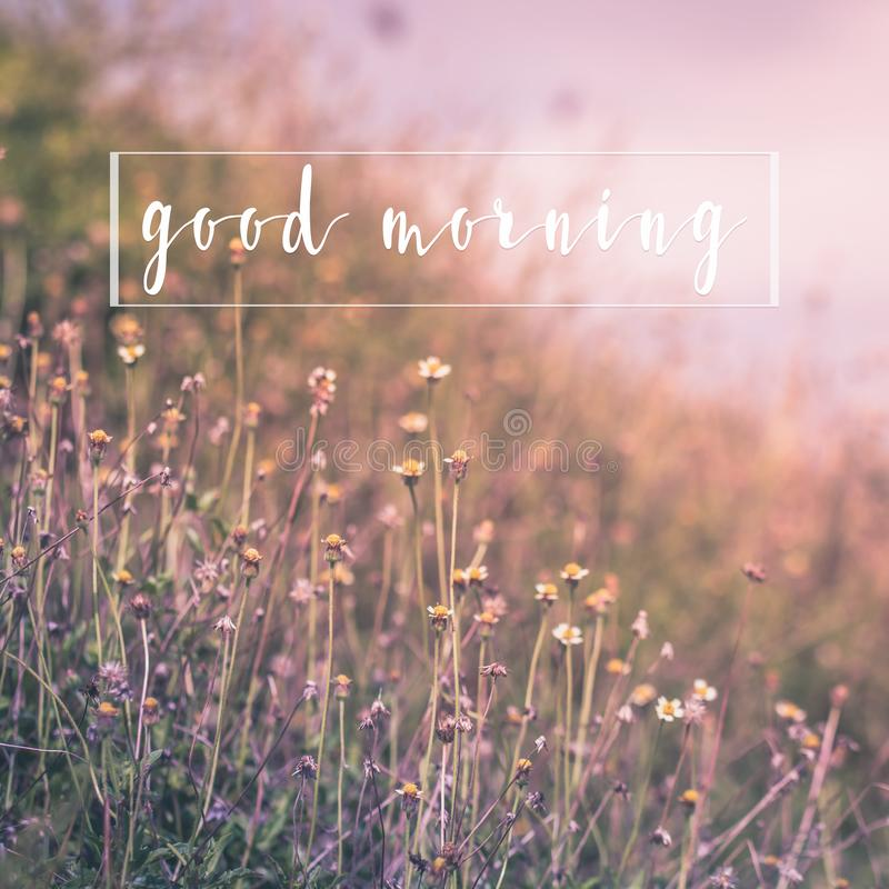 Good morning message on nature flower background greetings card.  royalty free stock photography