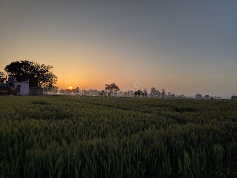 Good Morning Nature. Sunrise photos royalty free stock photography