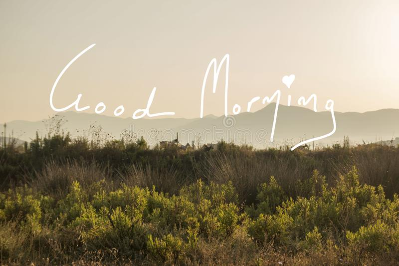 Good Morning Quote In a Rural Scene. A photo during the dawn with goats, wild plants and misty mountains wishing you Good Morning with a handwritten quote royalty free stock photography