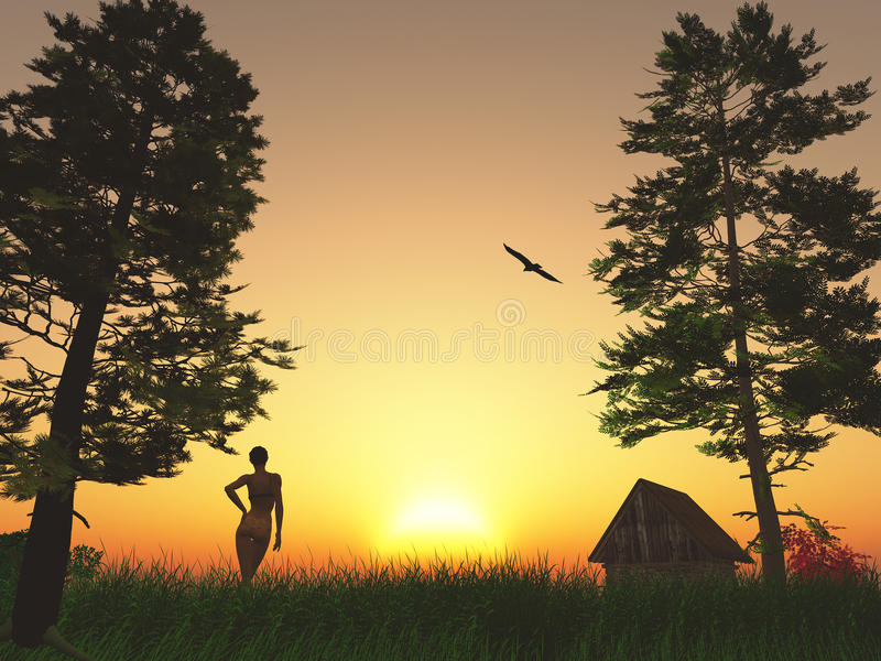 Good Morning Sunshine Download : Good morning sunshine stock image of holiday bird