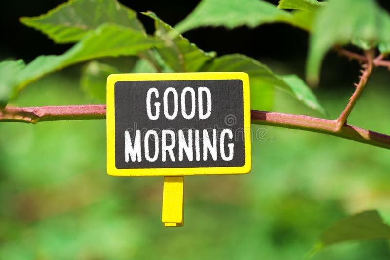 Good morning text on board royalty free stock image