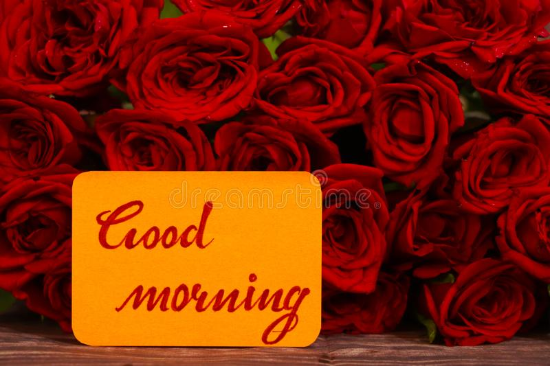 Good Morning text with Red roses in a bunch as a background. royalty free stock images