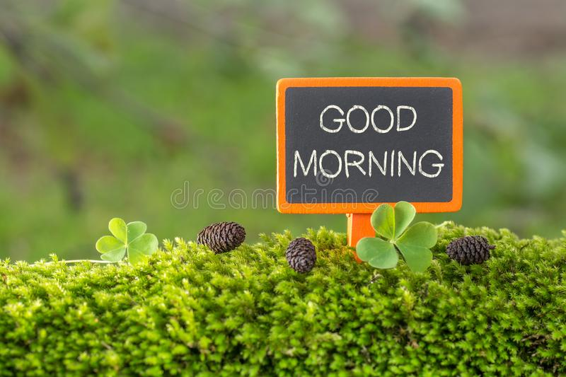 Good morning text on small blackboard. Sign on green moss with Clover , blur green tree plant background stock photo