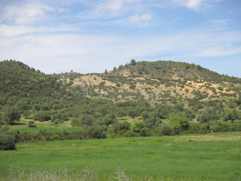 Good nature. North morocco ouezzane royalty free stock photo