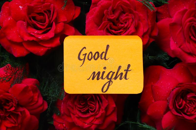 Good night with red roses. royalty free stock photography