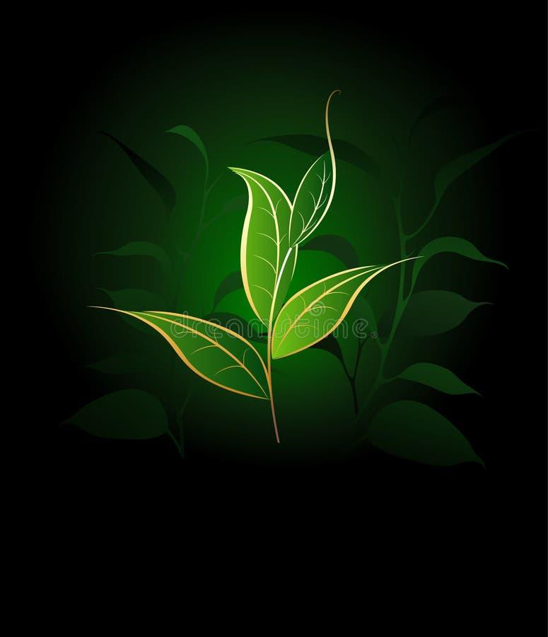 Good tea stock illustration
