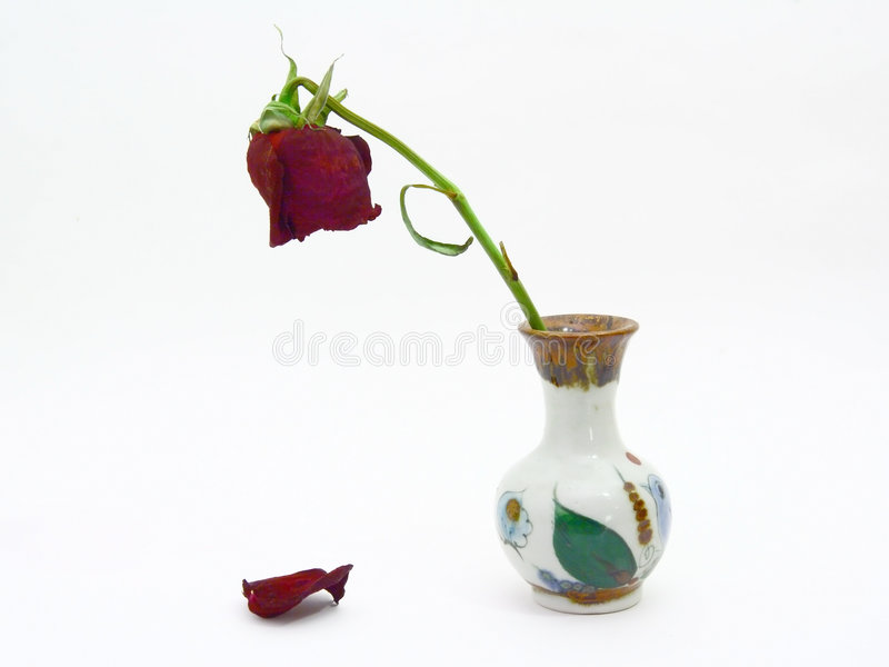 Download Goodbye My Love. Dying Rose. Stock Image - Image of colors, flora: 3788909
