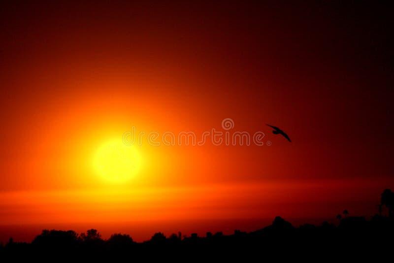Goodbye sun royalty free stock photos