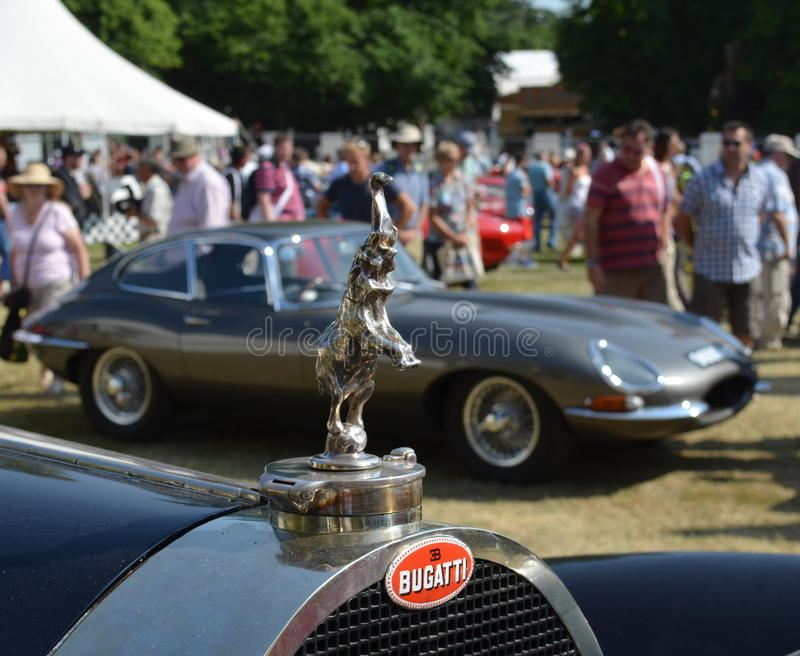 Goodwood festival av hastighet 2013 royaltyfri foto