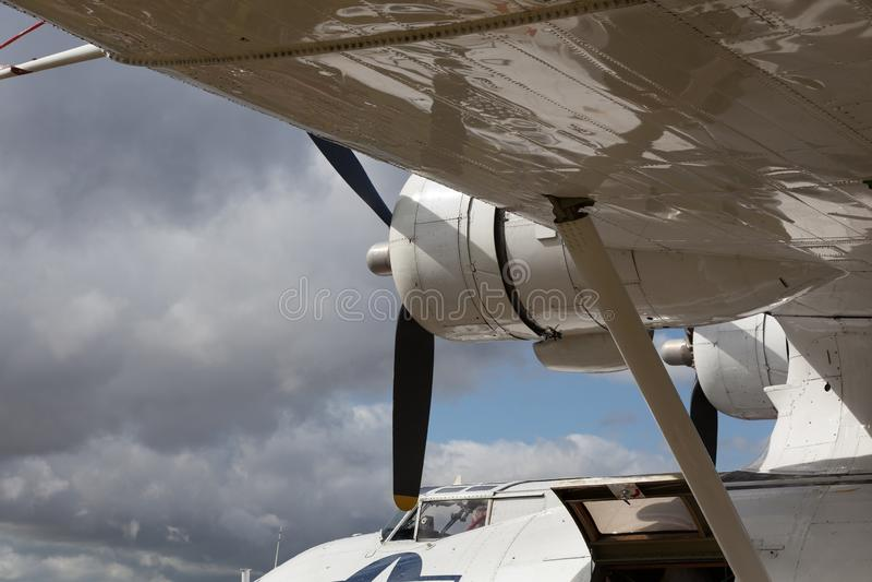 GOODWOOD, SUSSEX/UK OCCIDENTAL - 14 SEPTEMBRE : Plan rapproché de Catalina photos stock