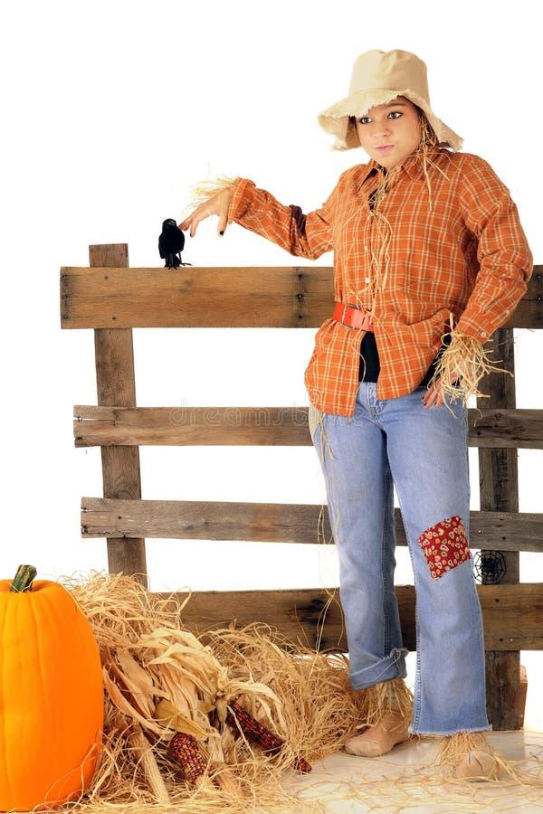 Free Goofy Teen Scarecrow Stock Image - 57022441