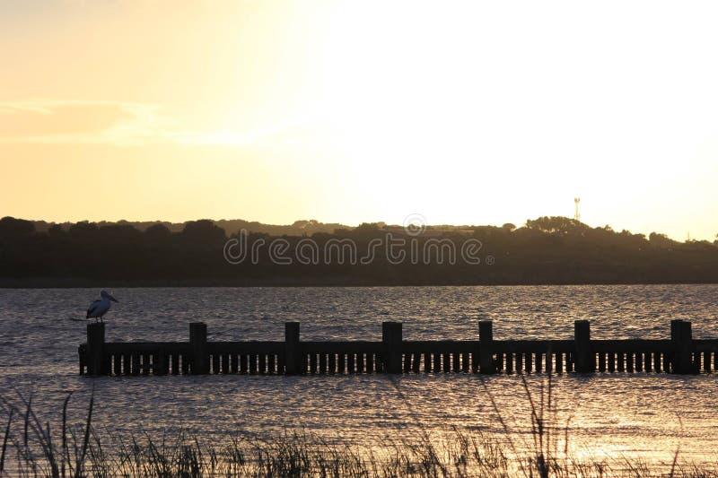 Goolwa sunrise royalty free stock photo