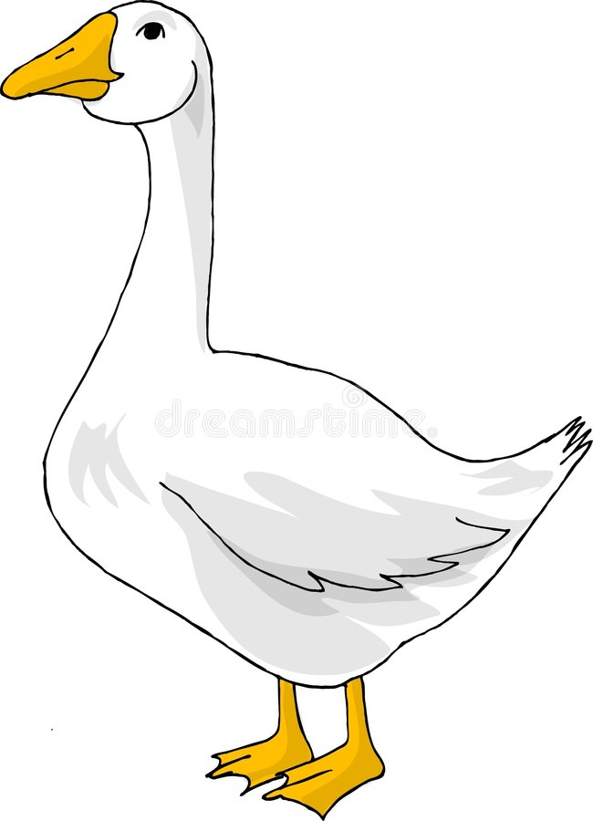 Download Goose stock illustration. Image of gaggle, geese, humor - 43131
