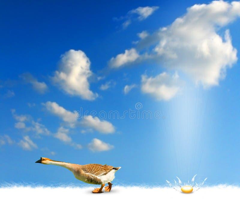 Download Goose with golden egg stock illustration. Illustration of fowl - 13719656