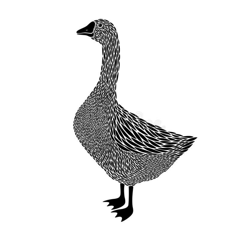 Goose vector illustration