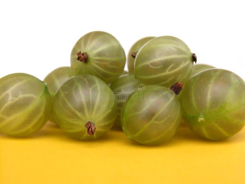 Download Gooseberries stock photo. Image of ingredients, green, fruit - 166122