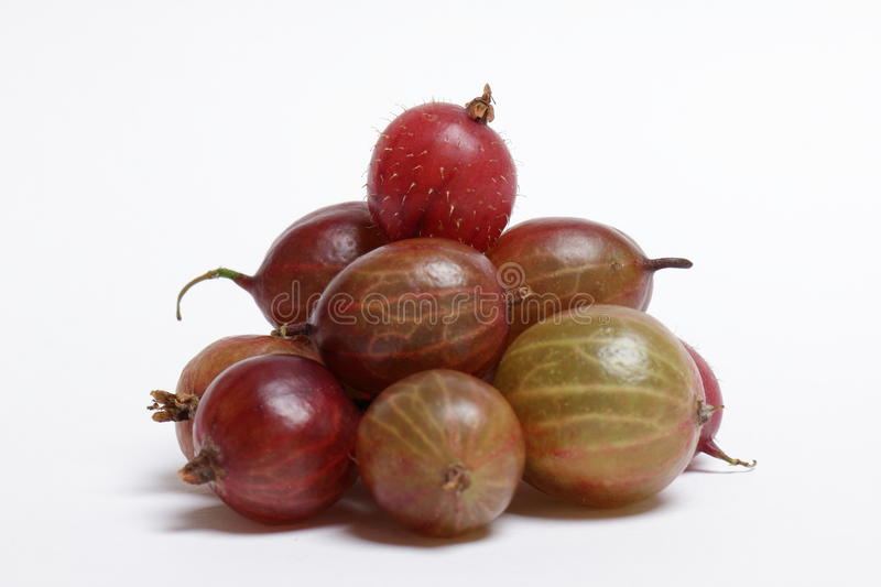 Gooseberries fotos de stock royalty free