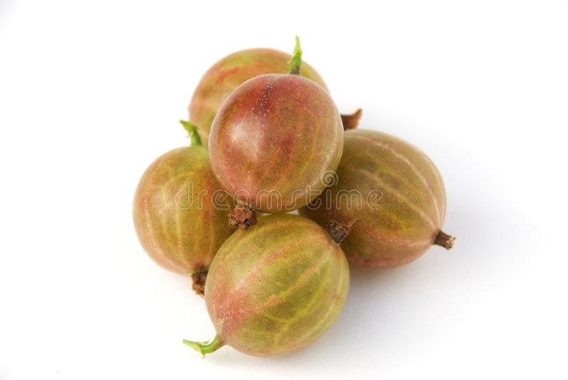 Gooseberries imagem de stock royalty free
