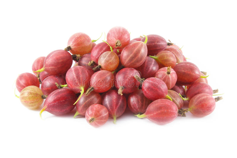 gooseberries foto de stock royalty free
