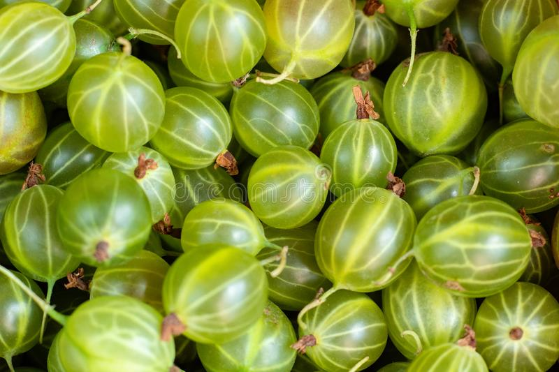 gooseberries in a basket on a wooden background stock photography