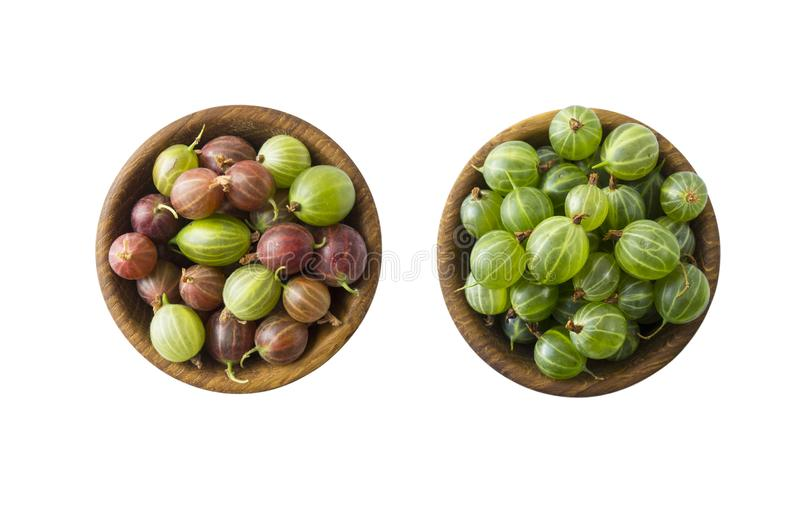 Gooseberries fruits isolated on white background. Gooseberries in a bowl with copy space for text. Ripe gooseberry close-up. Backg. Round berry. Sweet and juicy royalty free stock photography