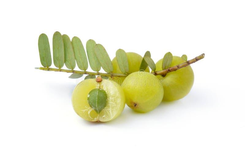 Gooseberries on white background royalty free stock image