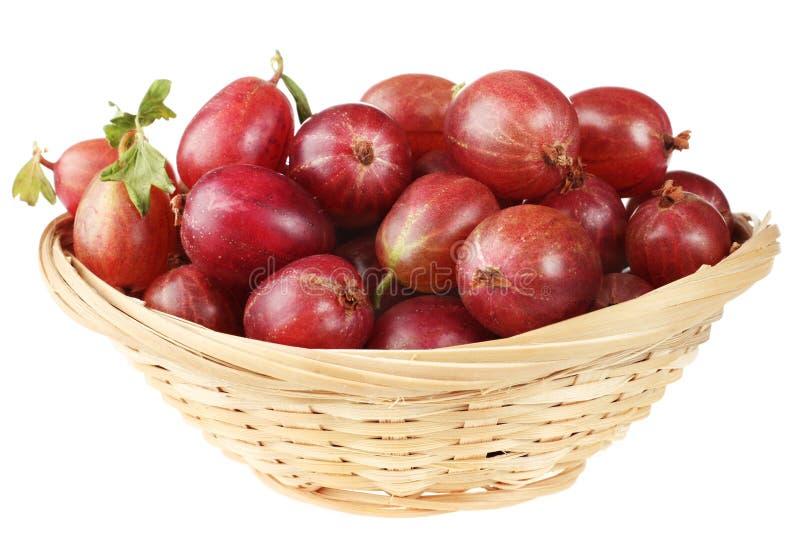Gooseberry in basket. Red gooseberry fruit in basket on background stock photo