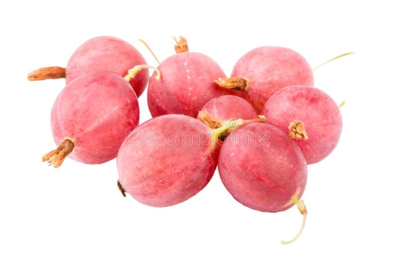 Gooseberry berry on white background stock photography