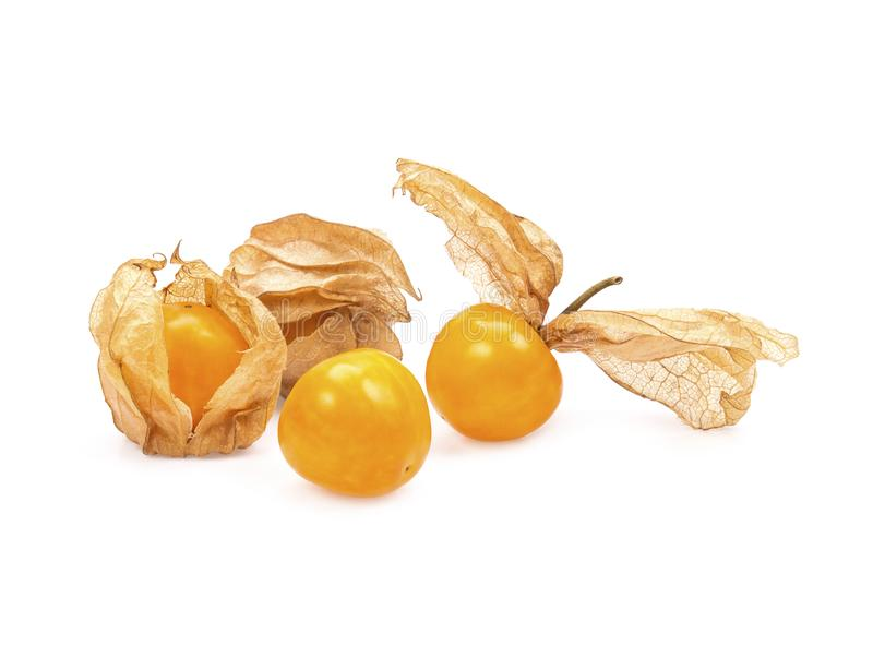 Gooseberry de cabo, physalis isolado no fundo branco foto de stock royalty free