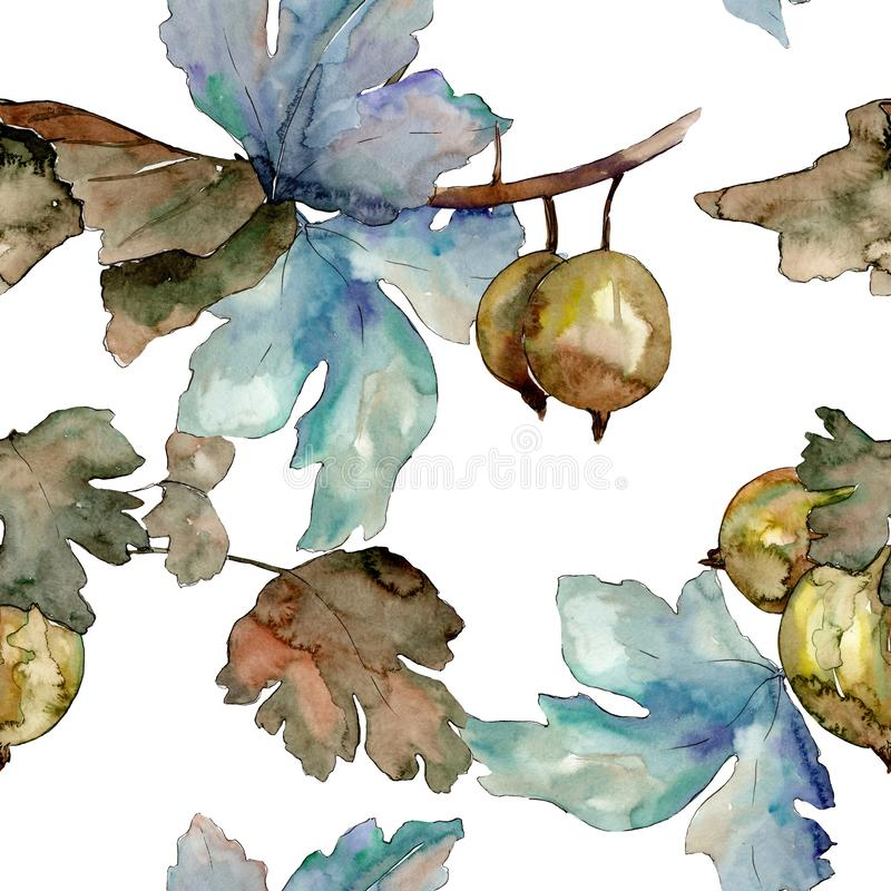 Gooseberry healthy food isolated. Watercolor background illustration set. Seamless background pattern. Gooseberry healthy food isolated. Watercolor background stock illustration