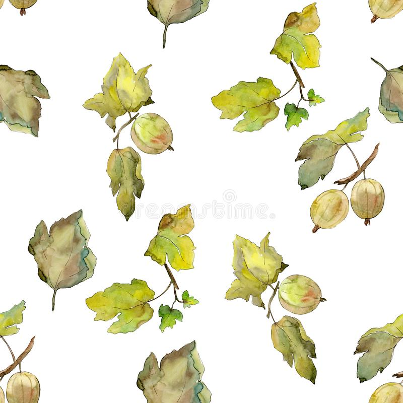Gooseberry healthy food. Watercolor background illustration set. Seamless background pattern. stock illustration