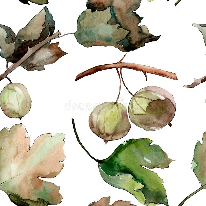 Gooseberry healthy food. Watercolor background illustration set. Seamless background pattern. royalty free illustration