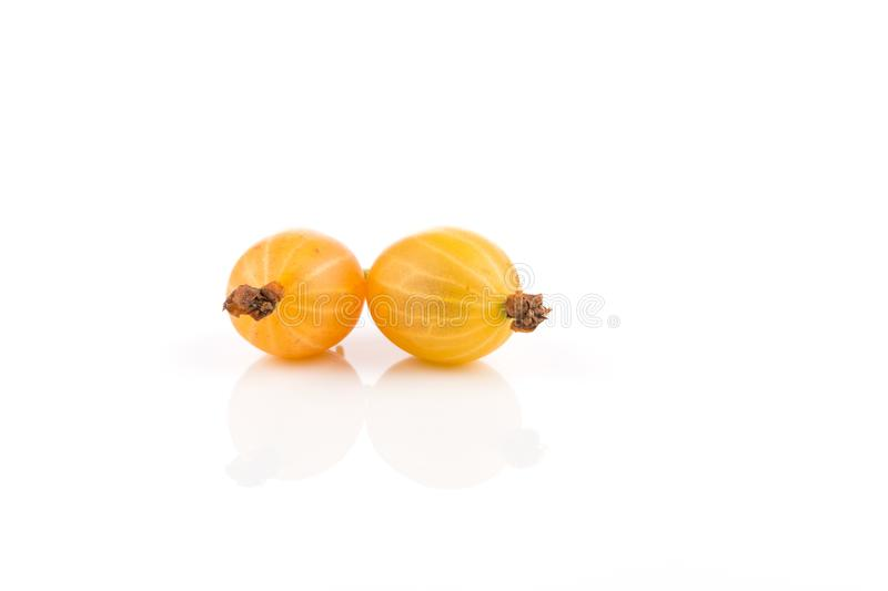 Gooseberry isolado no branco fotos de stock royalty free