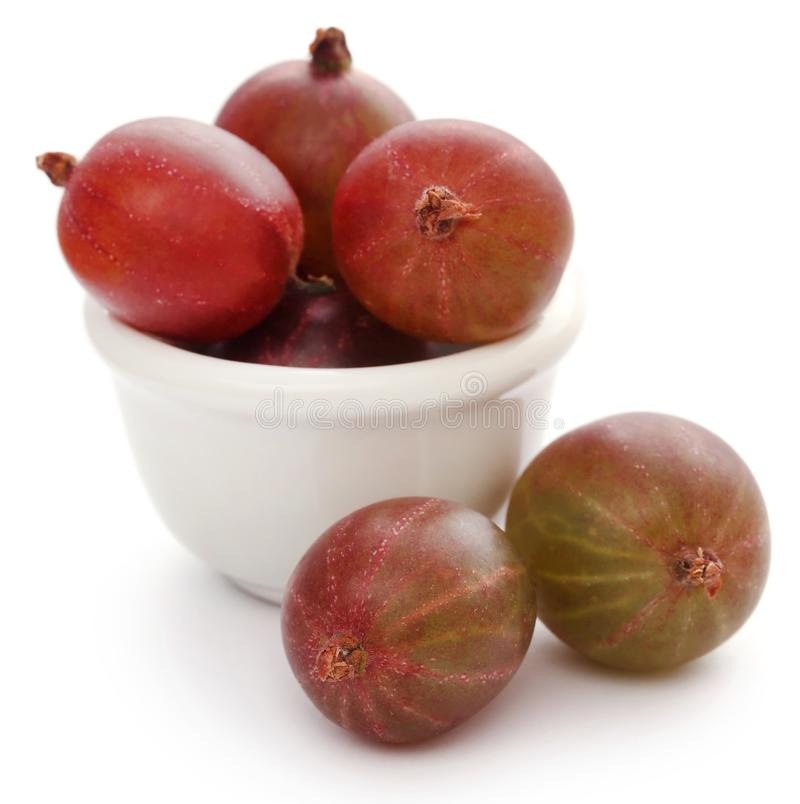 Gooseberry maduro fresco fotografia de stock royalty free
