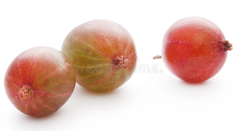 Gooseberry maduro fresco foto de stock