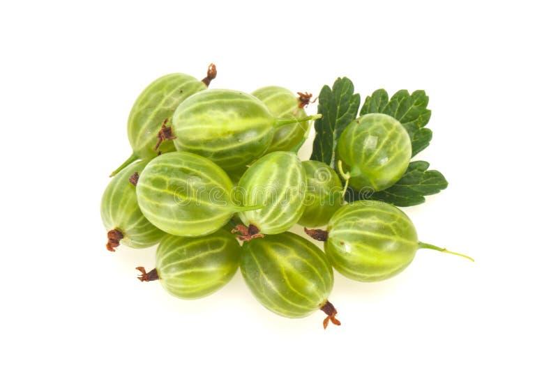 Gooseberry verde fresco fotos de stock royalty free