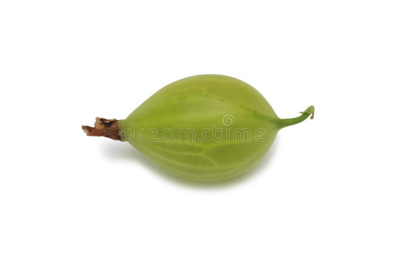 Gooseberry verde, isolado fotografia de stock royalty free