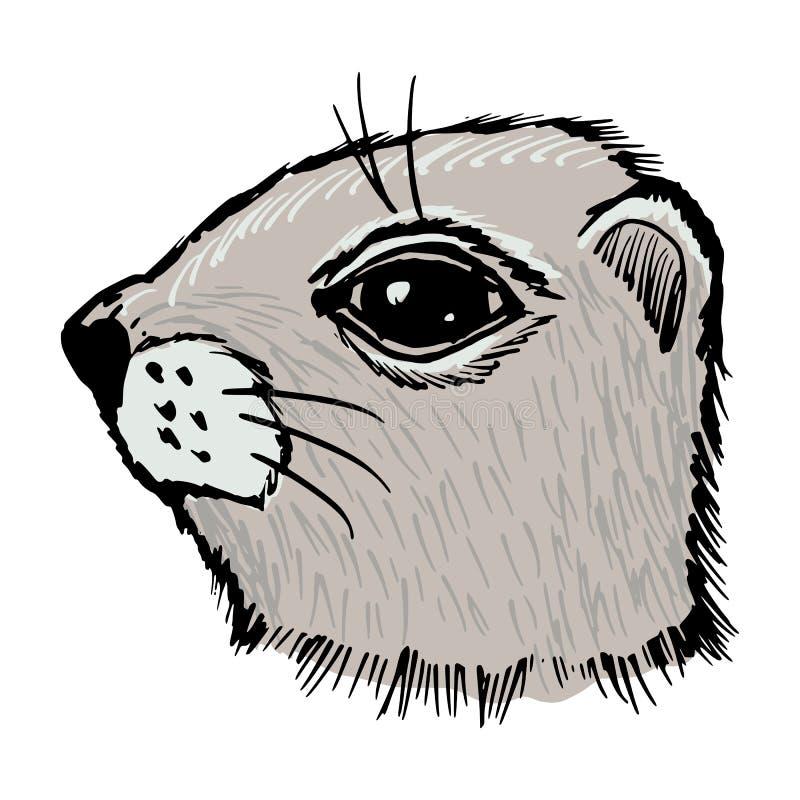 Gopher libre illustration