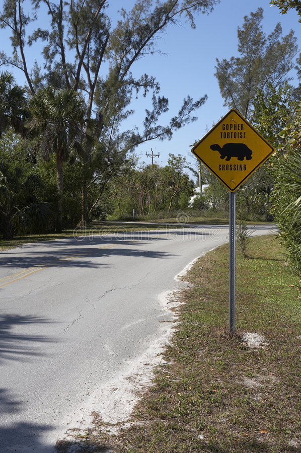 Gopher tortoise sign on dunlop road royalty free stock photo