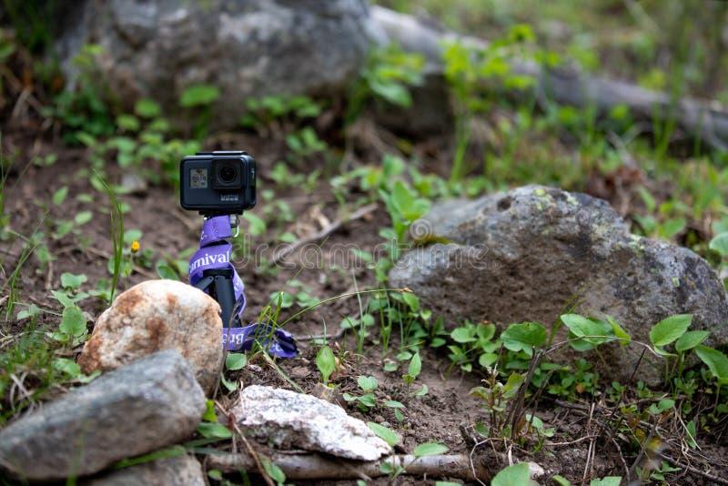 GoPro, das auf einem Felsen im Wald sitzt lizenzfreie stockfotos