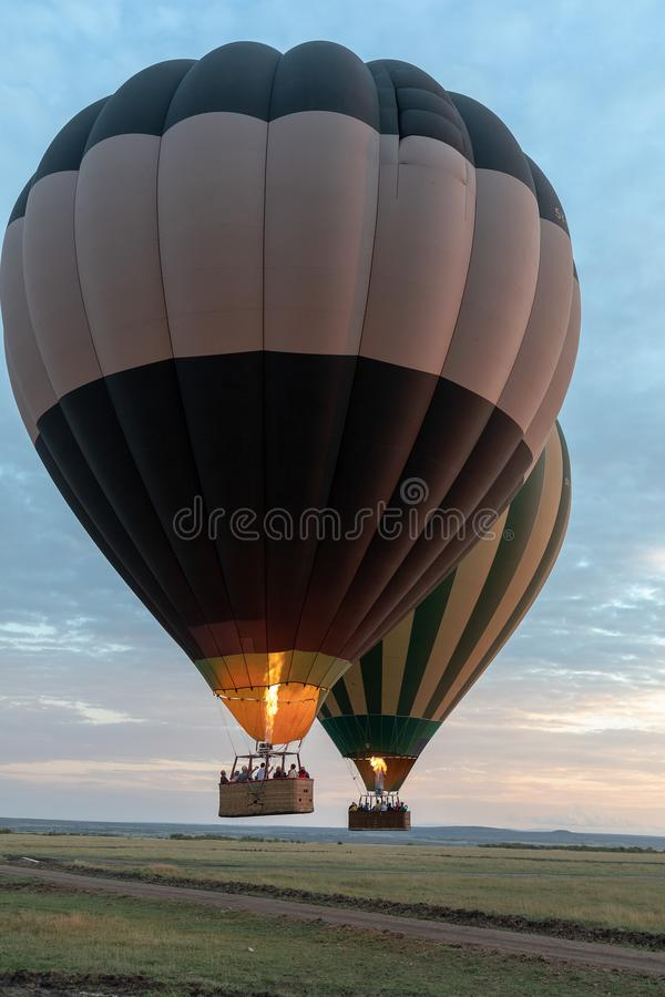 Gorące Powietrze balon nad Masai Mara, Kenja, Afryka obrazy stock