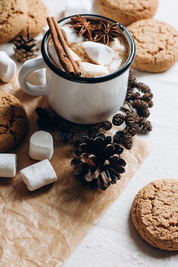 Gorąca czekolada lub kakao z marshmallow, ciastkami i pikantność na białym tle, obrazy stock