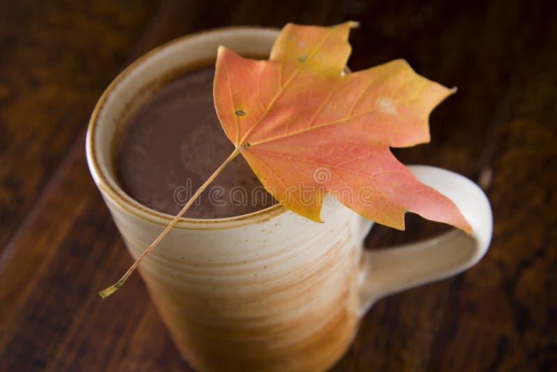 Gorąca czekolada w spadku zdjęcia royalty free