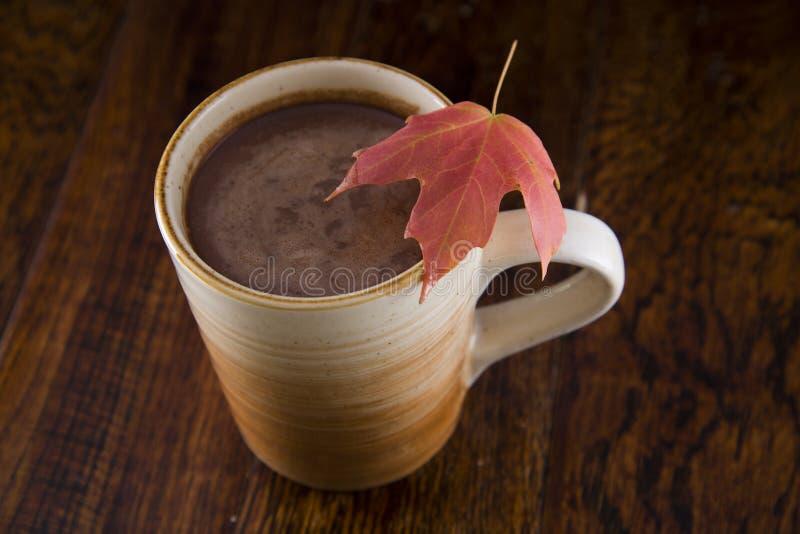 Gorąca czekolada w spadku obrazy stock
