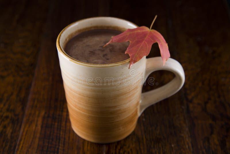 Gorąca czekolada w spadku zdjęcia stock