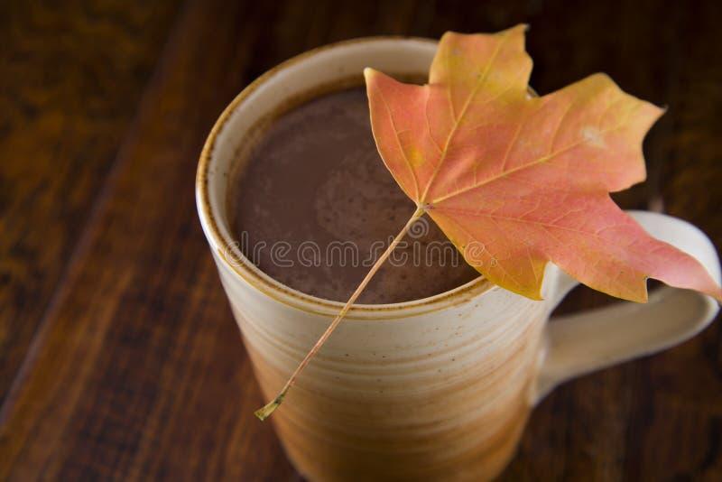 Gorąca czekolada w spadku fotografia royalty free