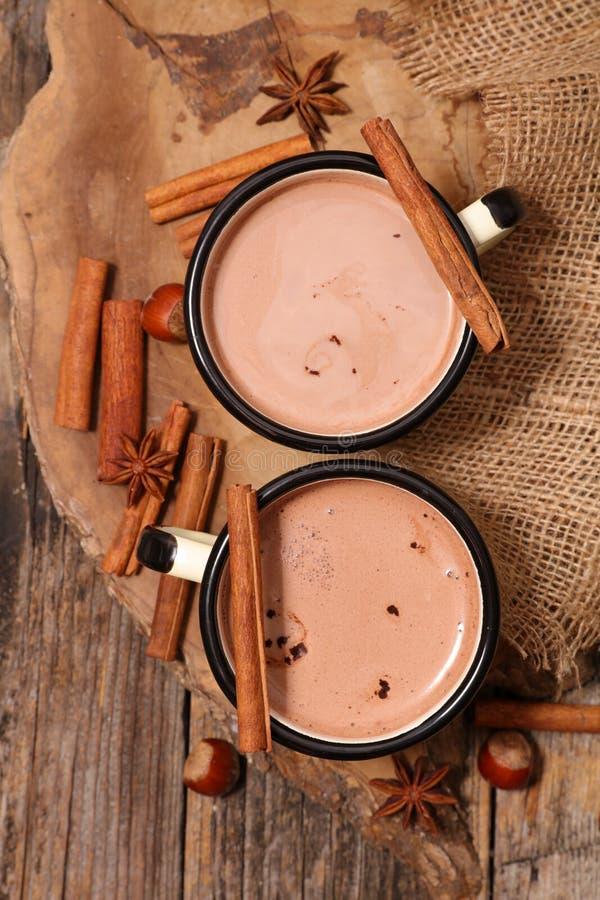 Gorąca czekolada z pikantność obraz stock